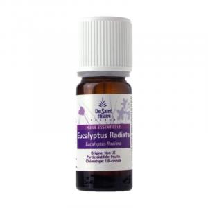 Eucalipto Globulus – Aceite esencial